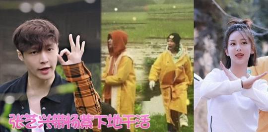 张艺兴开拖拉机带杨紫,两人被传恋情真的吗?