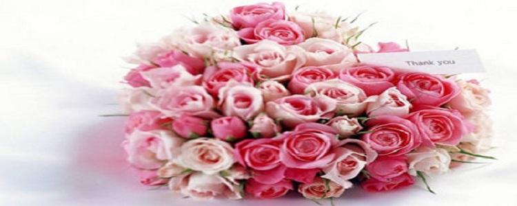 送花给女朋友写点什么好呢