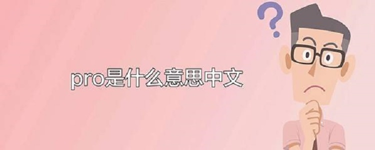 pro是什么意思中文