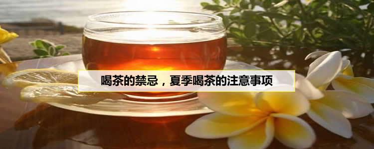 喝茶的禁忌,夏季喝茶的注意事项