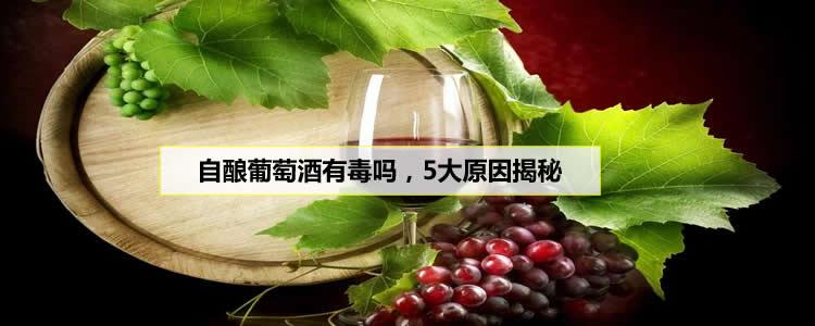 自酿葡萄酒有毒吗,5大原因揭秘