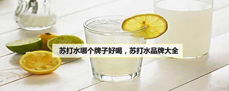 苏打水哪个牌子好喝,苏打水品牌大全