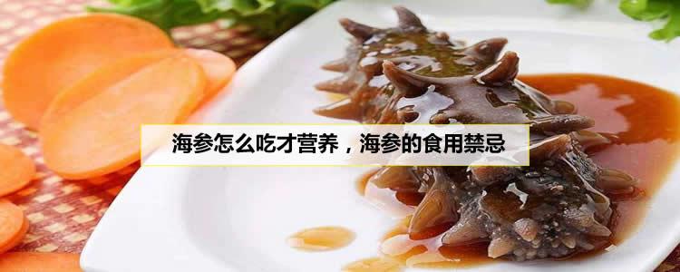 海参怎么吃才营养,海参的食用禁忌