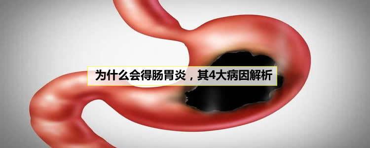 为什么会得肠胃炎,其4大病因解析